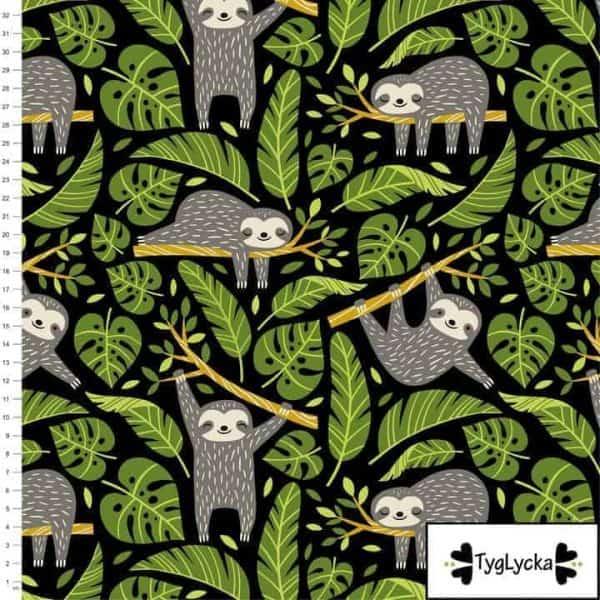 Tyglycka - Cute Sloths cute sloths1 1