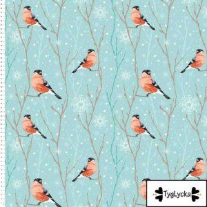 Nieuw Binnen winter birds1 1