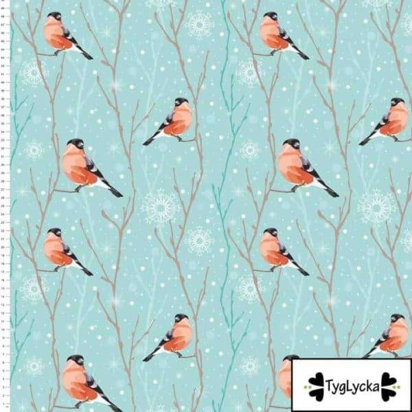 Tyglycka - Winter Birds winter birds1 1