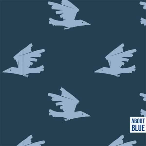 About Blue - Birds are coming