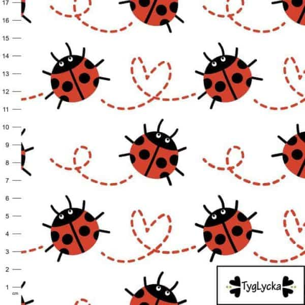 Tyglycka- ladybugs in love